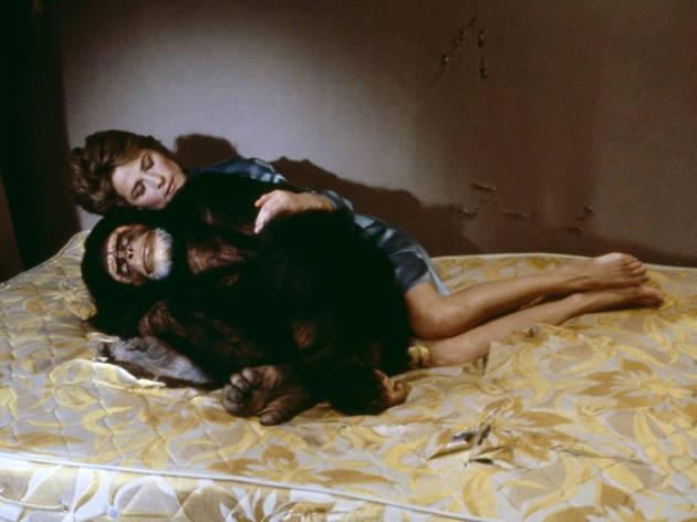 Max Mon Amour (1986)