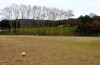 (Camp de Softbol)