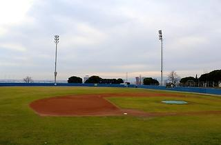 (Camp de Beisbol Pérez de Rozas)