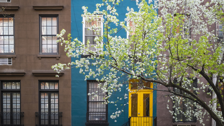 Beautiful photos of NYC in spring