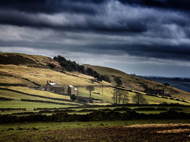 Strines Moor