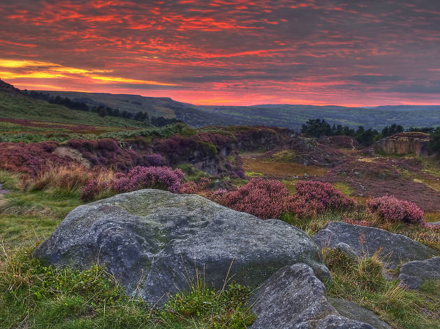 21 peaceful photos of the Yorkshire Moors