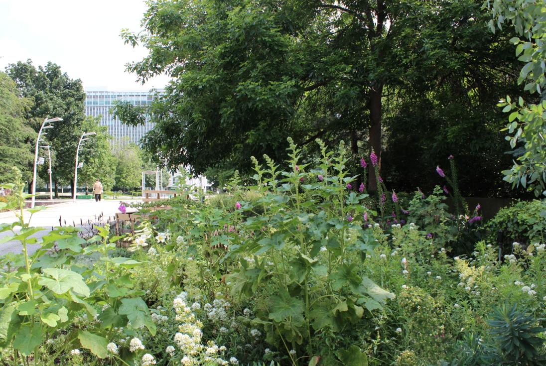Avec vue sur la Tour Montparnasse