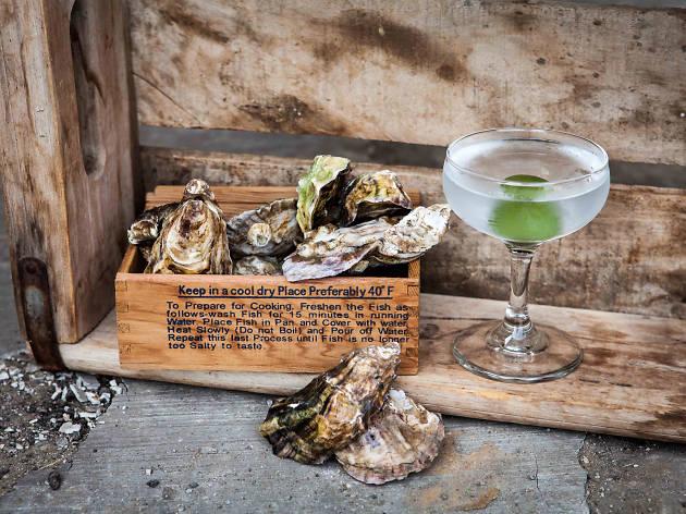 Gin Cocktail + Oyster Shucking Workshop