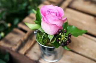 Au Nom de la Rose (©Scott Chasserot)