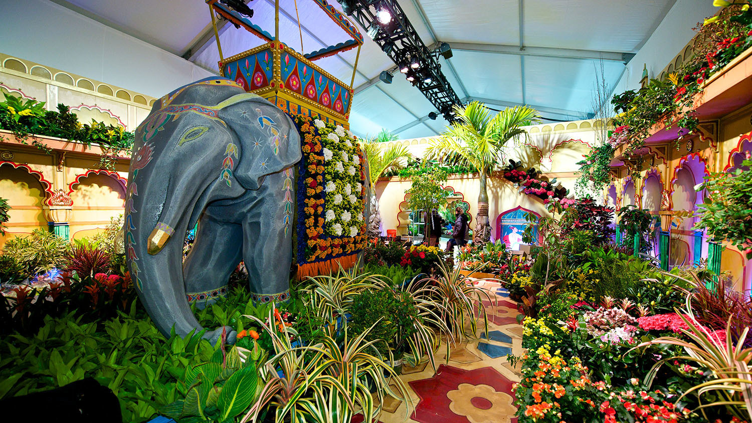 Image Result For San Francisco Flower Garden Show