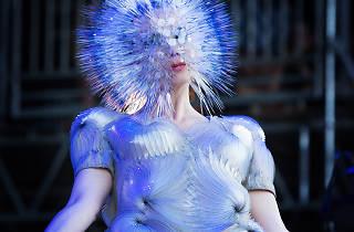 Björk cropped