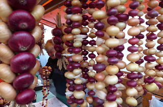 Onion market, Bern festival, Time Out Switzerland