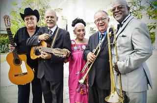 Festival Jardins de Pedralbes 2015: Orquesta Buena Vista Social Club