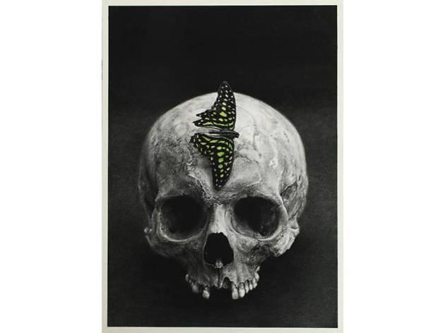 (Cindy Wright, 'Green Mohawk', 2015 / Courtesy galerie Van de Weghe, Anvers, Belgique)