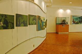 Museo del Caracol (Foto: Miguel Etc.)