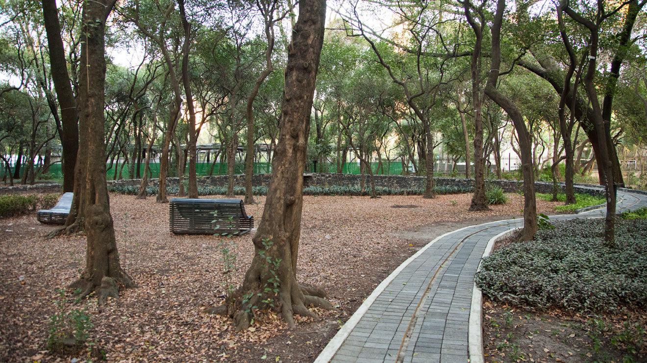 Jardín Sensorial