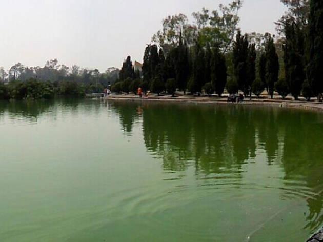 Lago del Bosque de Chapultepec (Foto: Victor Santacruz)