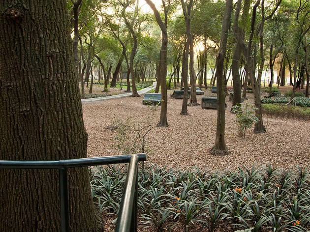 Jardín Sensorial (Foto: Alejandra Carbajal)