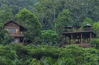 Templer Park Rainforest Retreat
