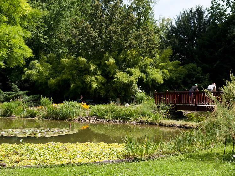Go green at the Botanical Gardens