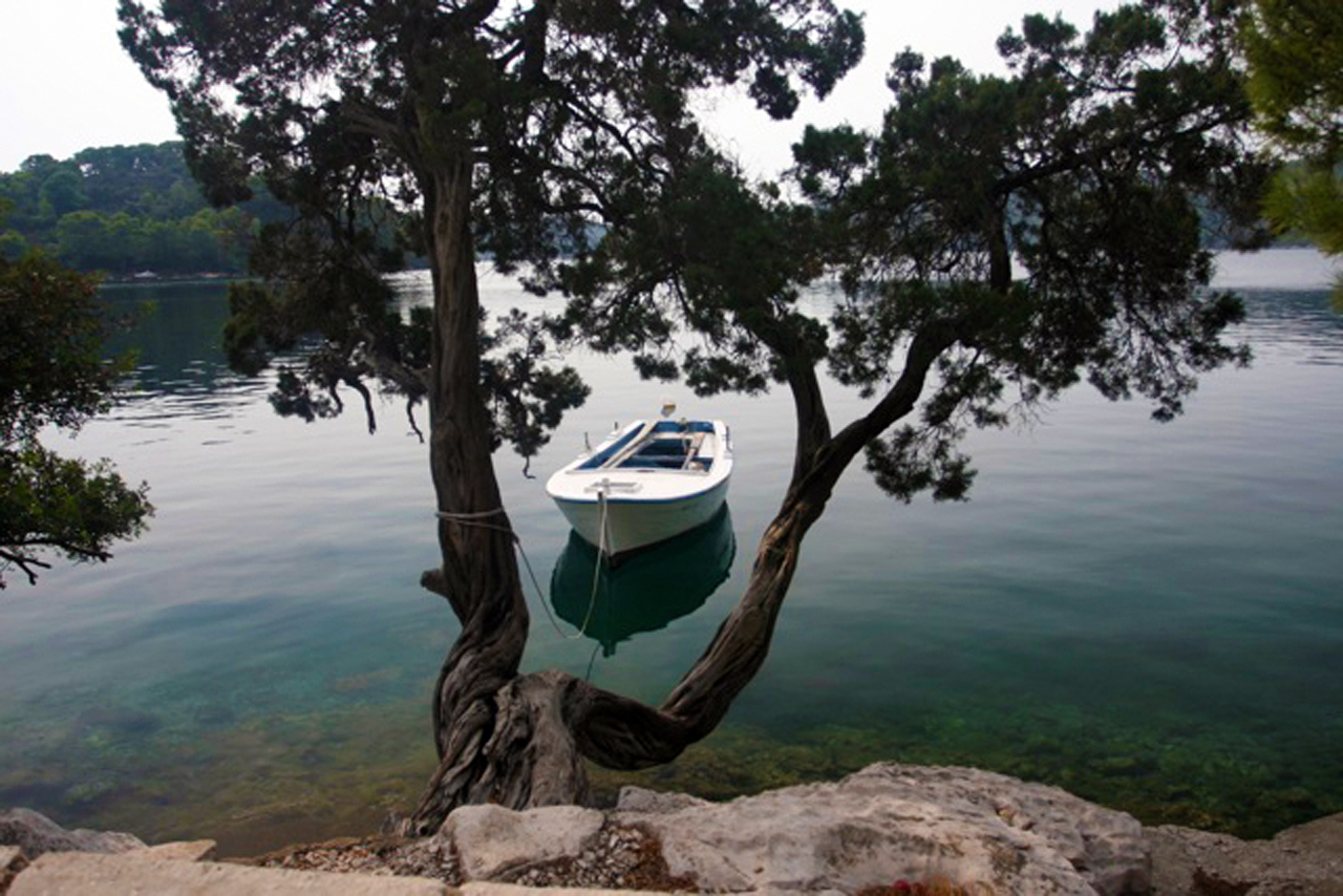 Mljet overview