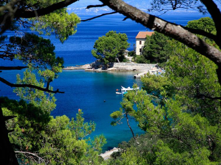 Catch a boat to Lošinj