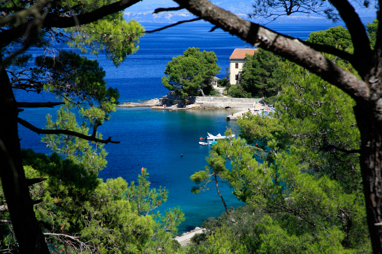 Catch a boat to Lošinj