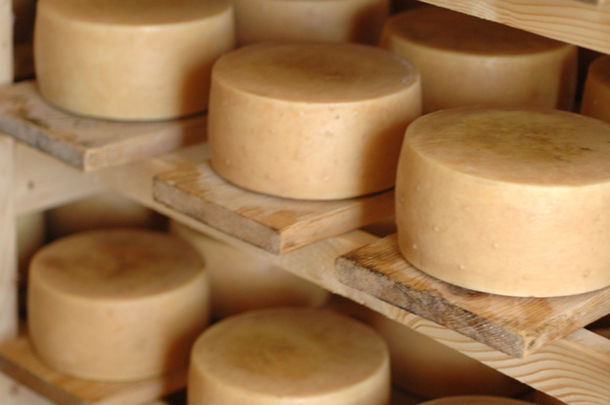 Sample Croatian cheese