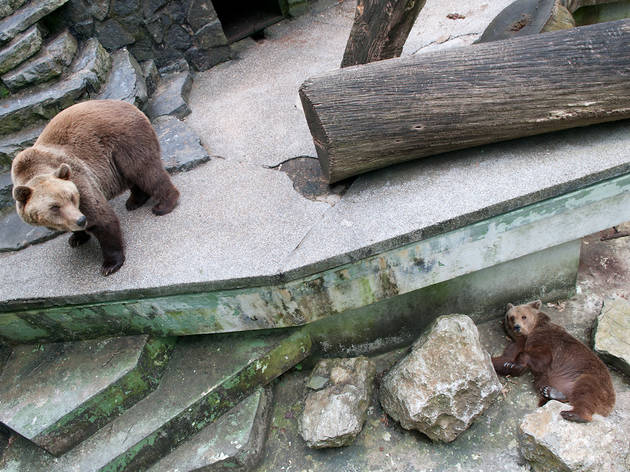 Maksimir Zoo