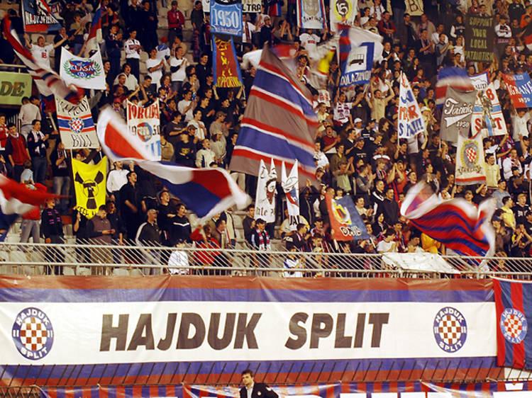 Catch a Hajduk game