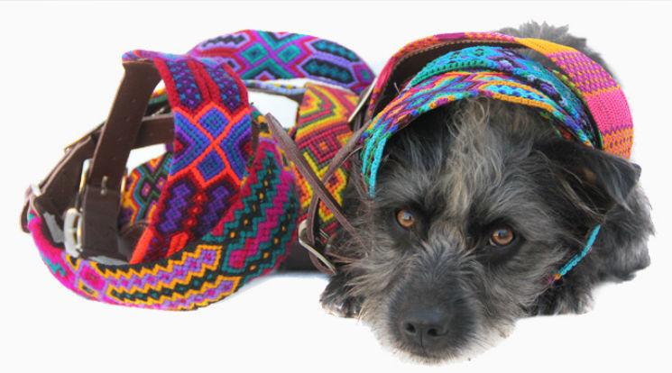 Bo collares para perro for Como hacer un collar para perro