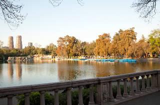 Verano en Chapultepec