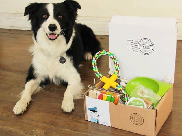 Pet Mail (Foto: Cortesía Pet Mail)
