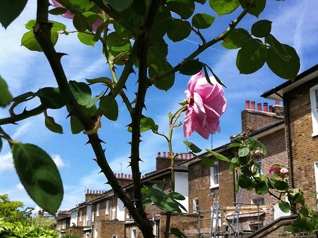 Sunny London street