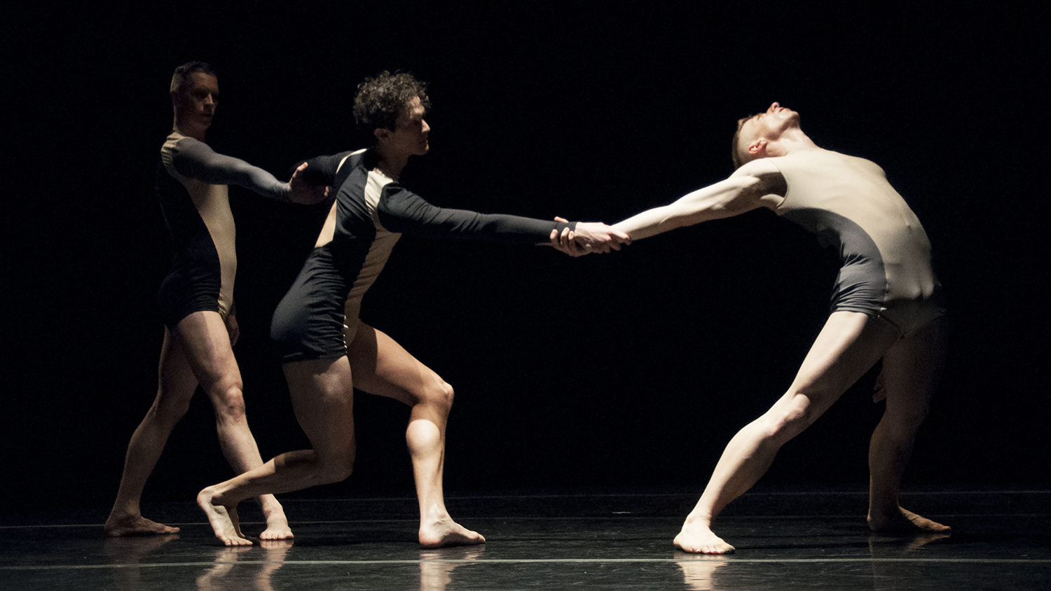 Check out these shots of the Stephen Petronio Company