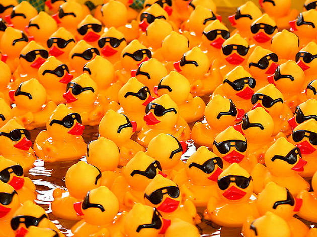 Smethwick Community Duck Race