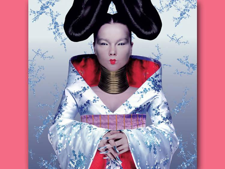 Björk 'Homogenic'