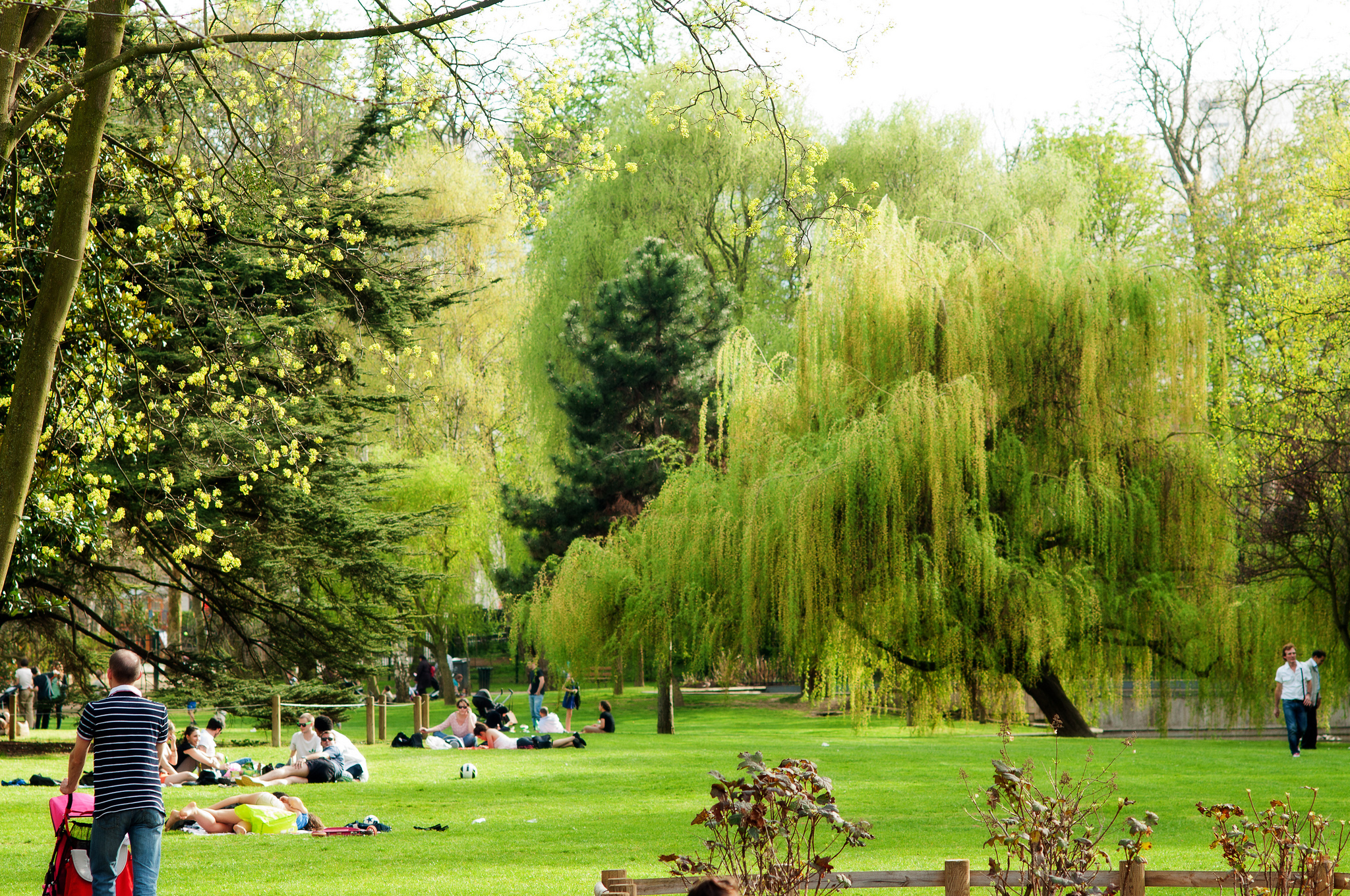 Paris's best parks and gardens