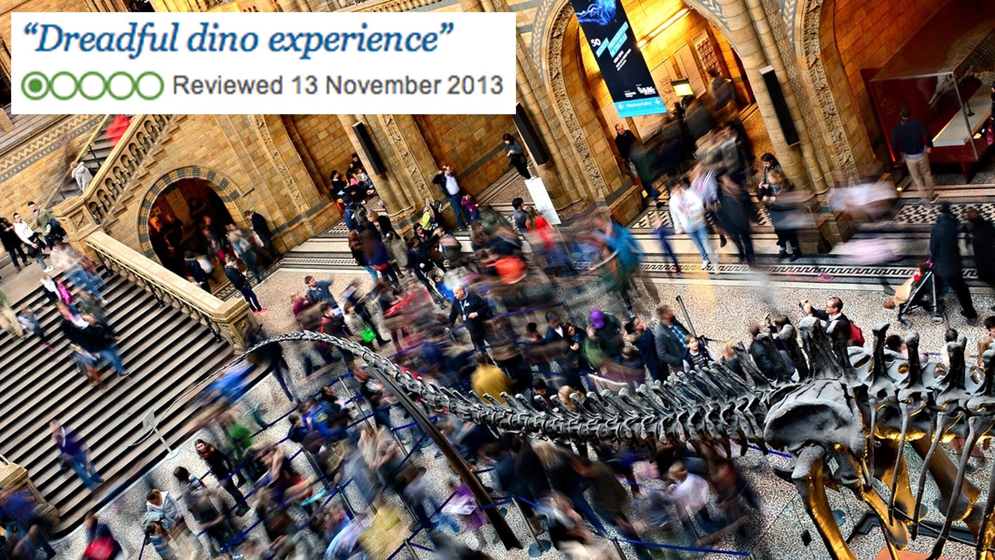 Natural History Museum TripAdvisor review