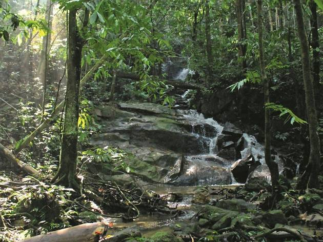 The best secret hiking trails in Klang Valley