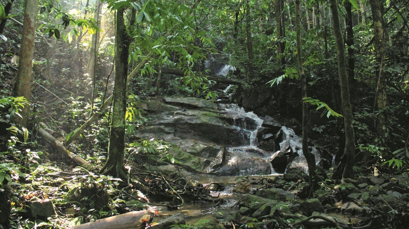 The best secret hiking trails in Klang Valley