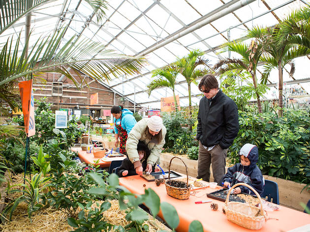 Kilbourn Park Greenhouse