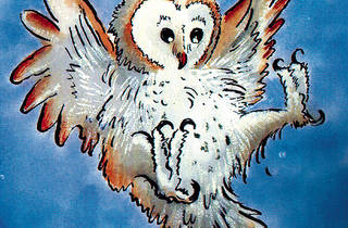 The Owl Who Was Afraid of the Dark.jpg