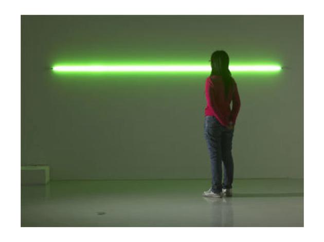 Evariste Richer: Le Rayon vert, 2005