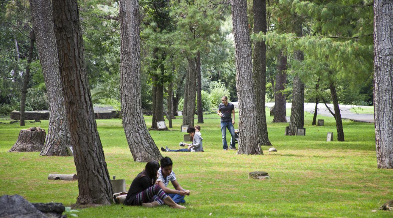 Jardín Botánico del Instituto de Biología de la UNAM