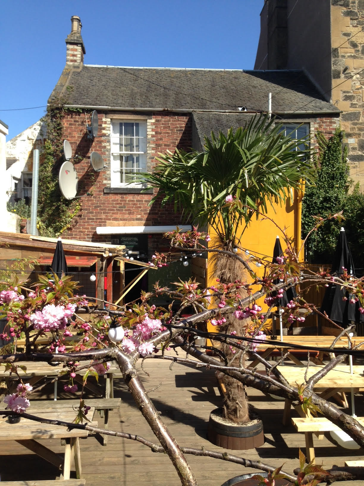 The best beer gardens in Edinburgh