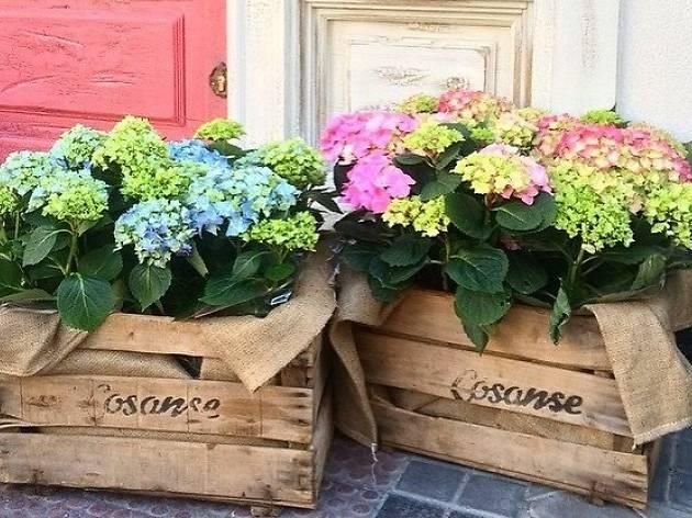 9 floristerías con encanto de Madrid