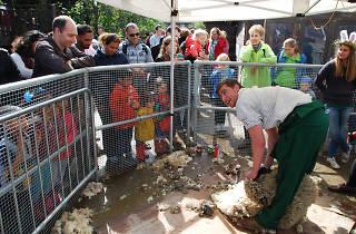 Surrey Docks Farm Spring Fair