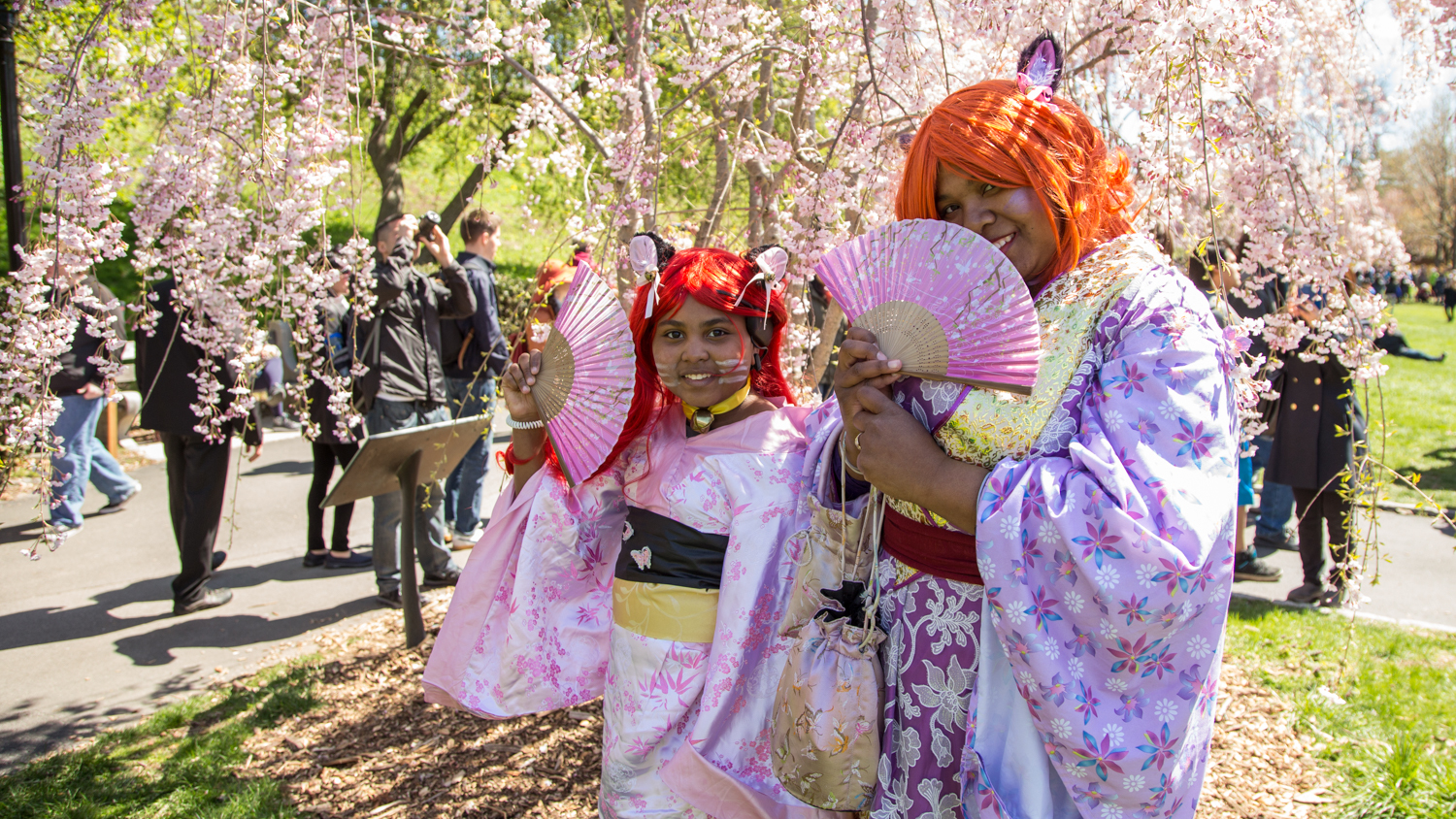 Gorgeous photos from the Cherry Blossom Festival
