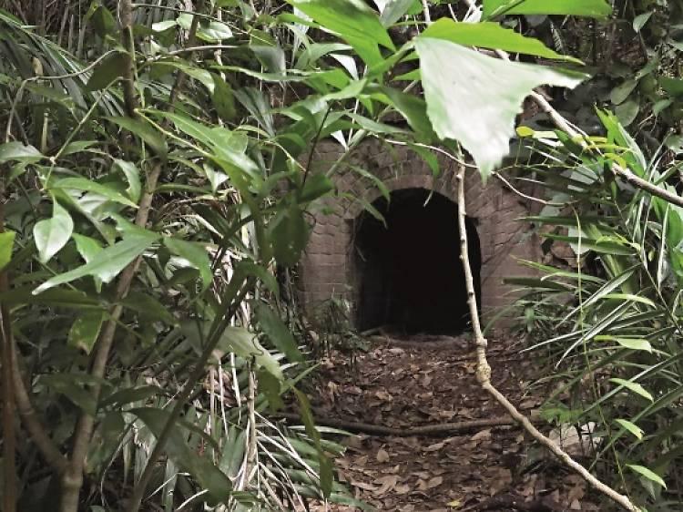 Five walking trails off the beaten path