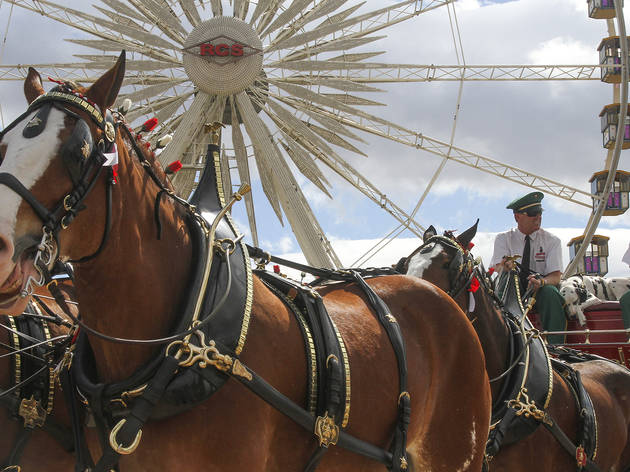 Our 50 best photos from Stagecoach 2015
