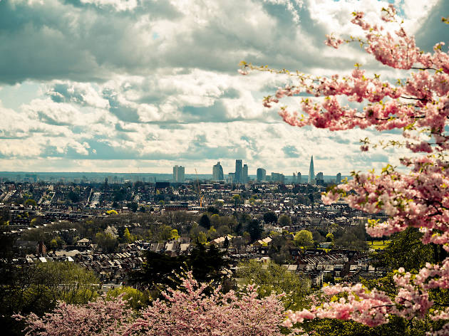 A view of London through spring blossom from Alexandra Palace, north London.