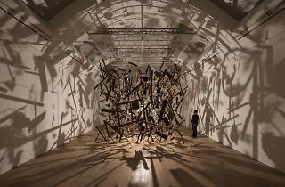 <b>Whitworth art gallery</b>, ©David Levene