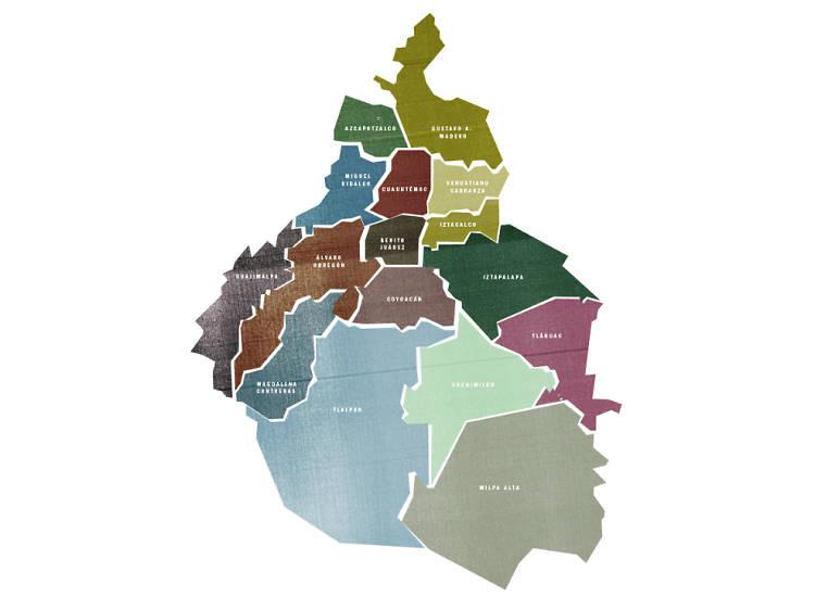 Elecciones federales y locales